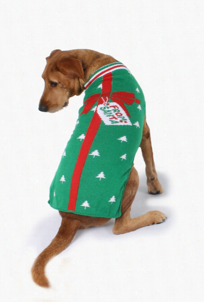 Christmas Present Dog Sweater by Tipsy Elves