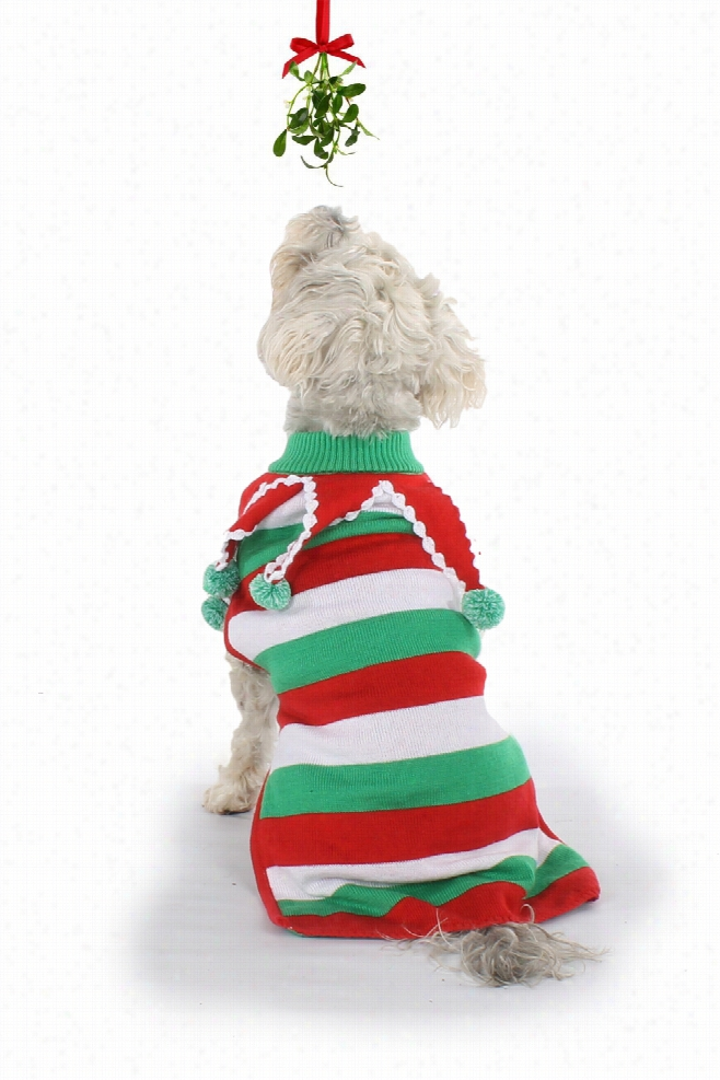 Ugly Christmas Dog Sweater by Tipsy Elves