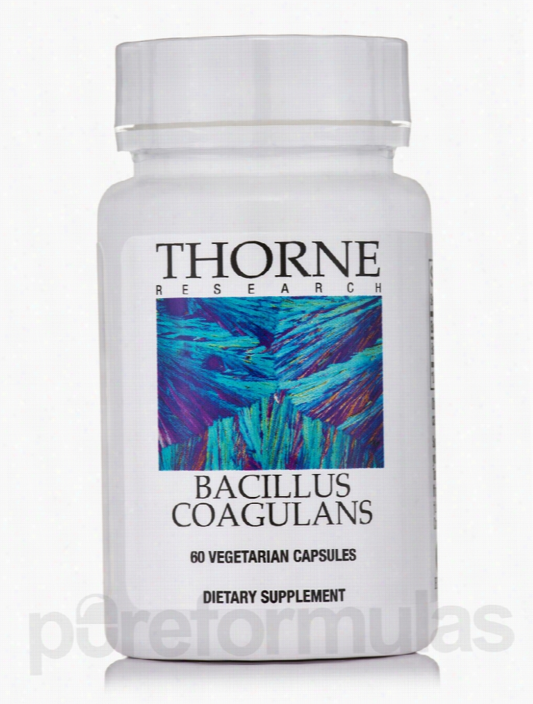 Thorne Research Immune Support - Bacillus Coagulans - 60 Vegetarian