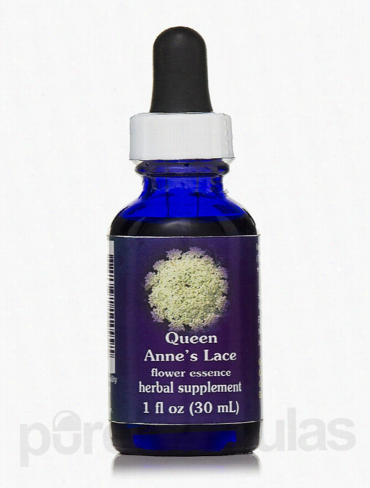 Flower Essence Services Herbals/Herbal Extracts - Queen Annes Lace