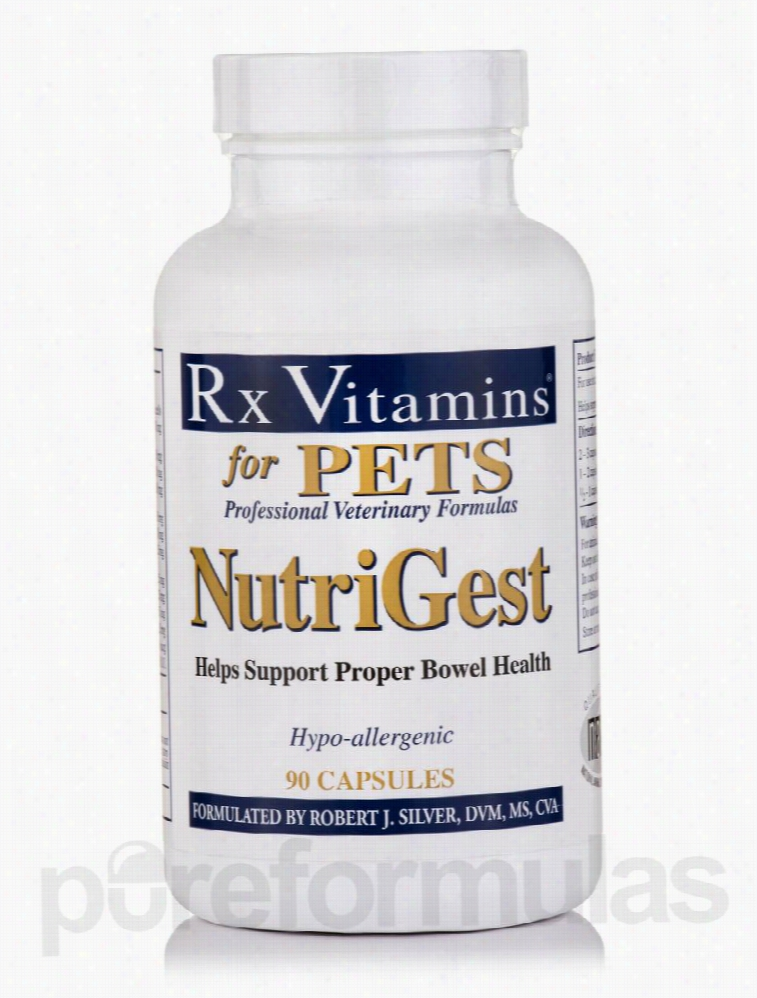 Rx Vitamins Dogs - NutriGest for Pets (Companion Adults) - 90 Capsules