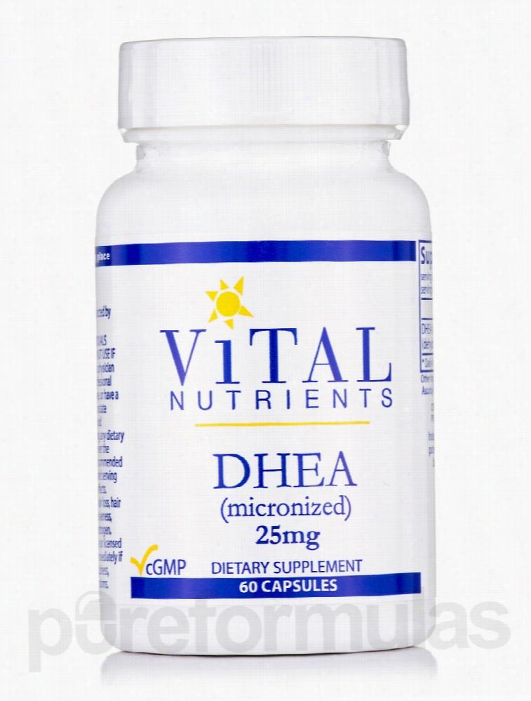 Vital Nutrients Hormone/Glandular Support - DHEA (micronized) 25 mg -