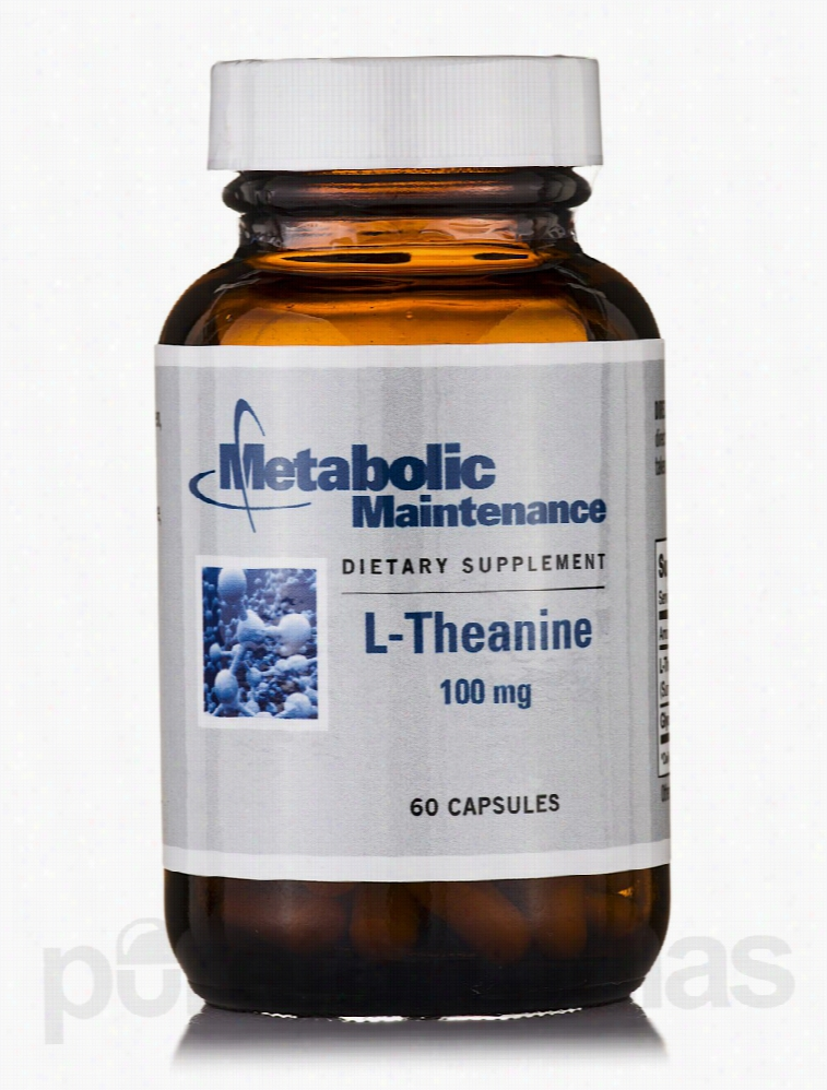 Metabolic Maintenance Immune Support - L-Theanine 100 mg - 60 Capsules