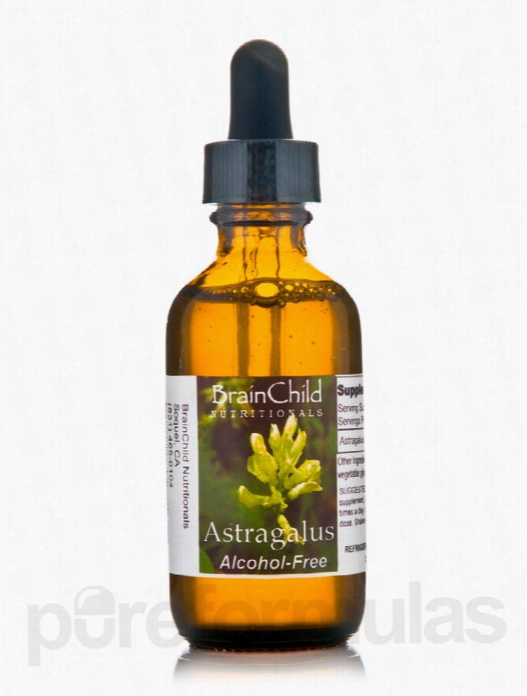 BrainChild Nutritionals Immune Support - Astragalus (Alcohol-Free) - 2