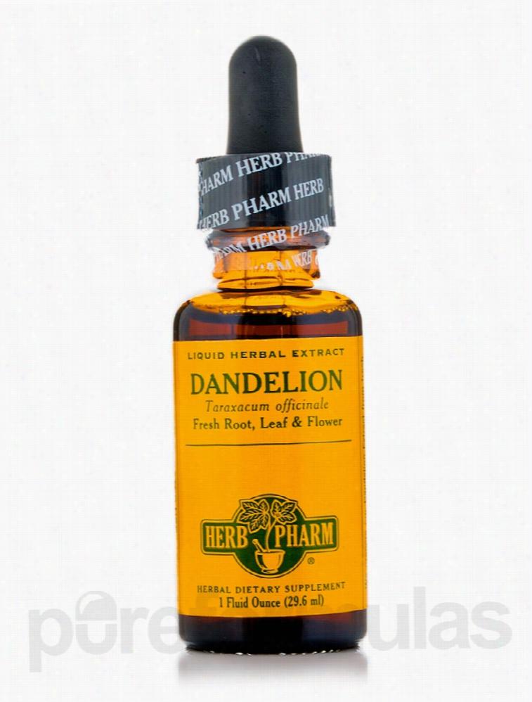 Herb Pharm Detoxification - Dandelion - 1 fl. oz (29.6 ml)