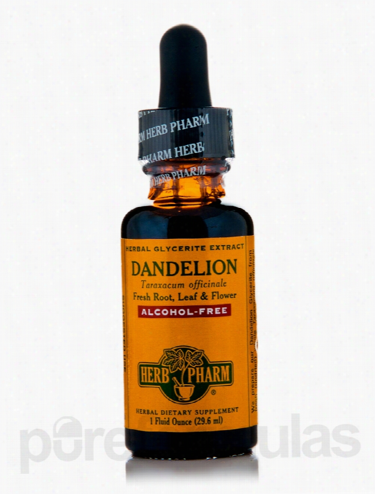 Herb Pharm Detoxification - Dandelion Alcohol-Free - 1 fl. oz (29.6
