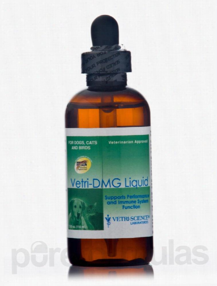Vetri-Science Laboratories Dogs - Vetri-DMG Liquid (Dogs, Cats &