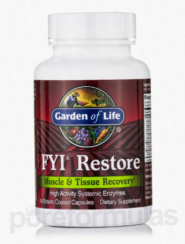Garden of Life Joint Support - FYI Restore - 60 Enteric Coated