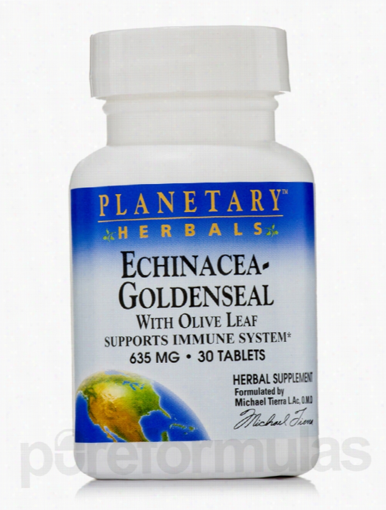 Planetary Herbals Herbals/Herbal Extracts - Echinacea Goldenseal with