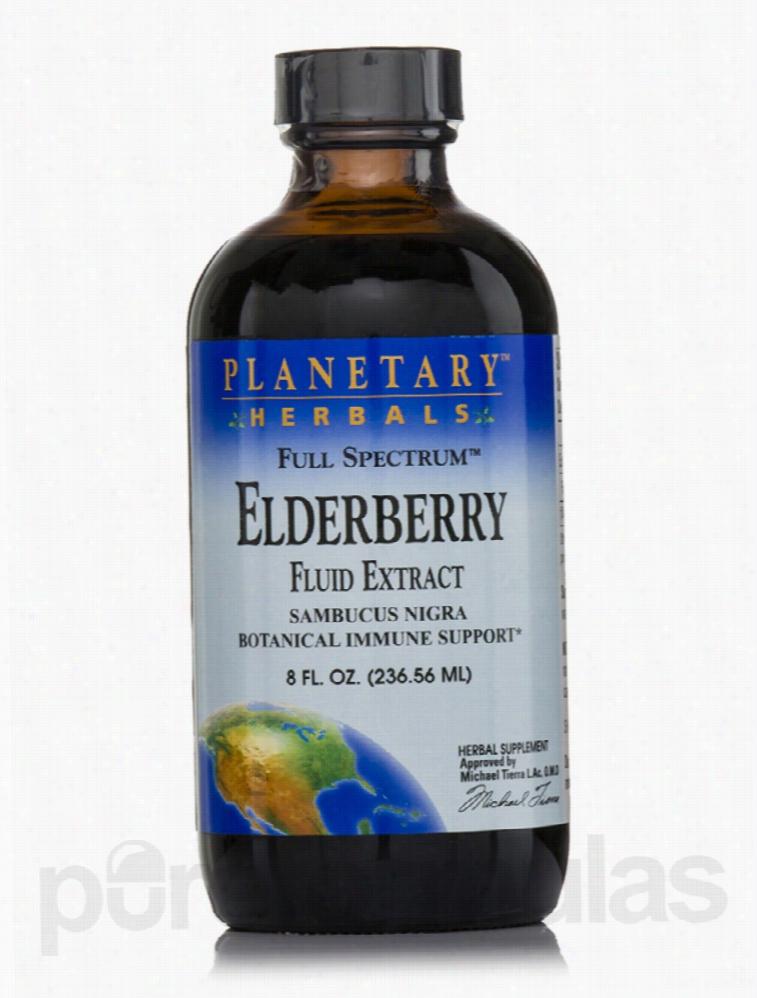 Planetary Herbals Herbals/Herbal Extracts - Full Spectrum Elderberry