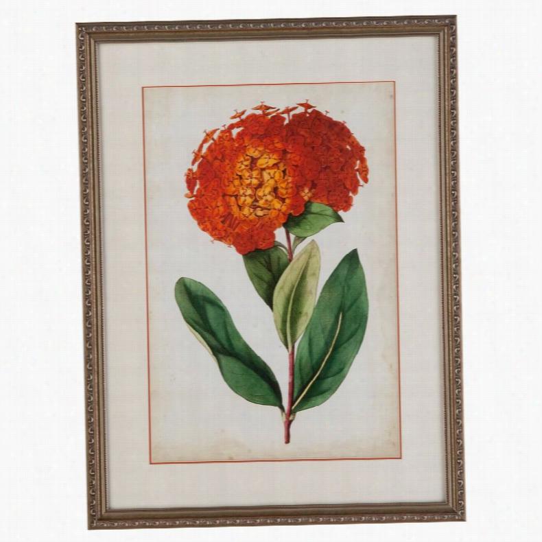 Bassett Mirror Tangerine Floral II Wall Art