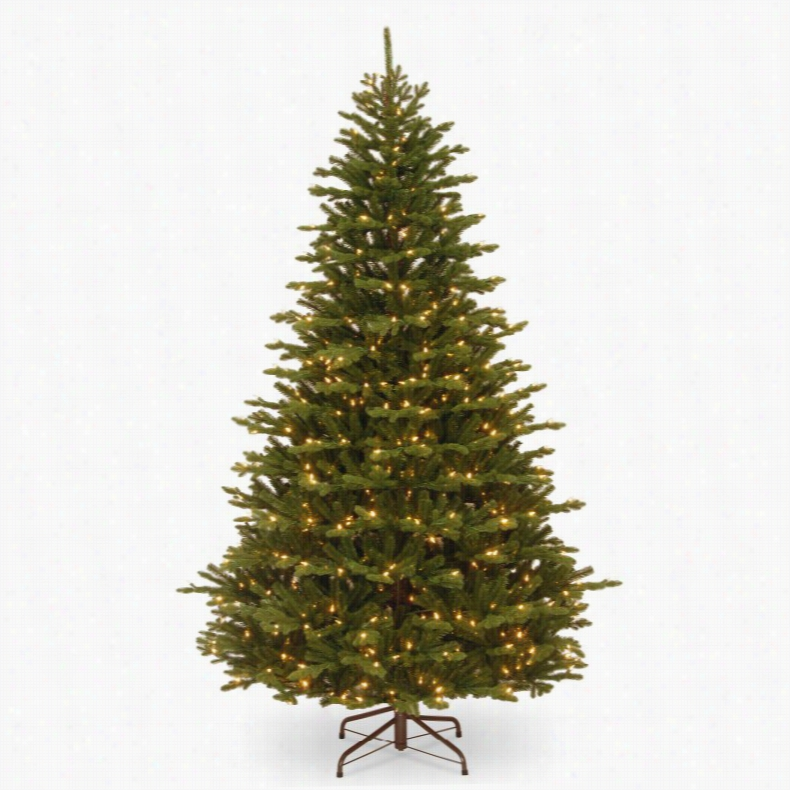 7.5 ft. Feel-Real Stafford Fir Hinged prelit Full Christmas Tree