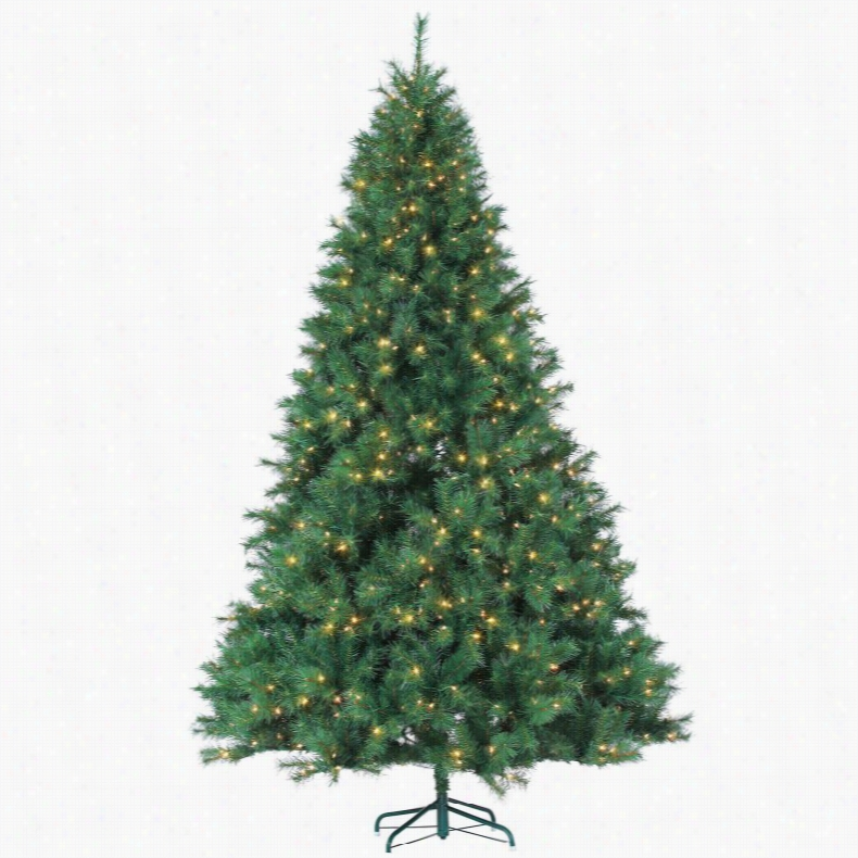 9 ft. Wisconsin Spruce prelit Full Christmas Tree by Sterling Tree Company
