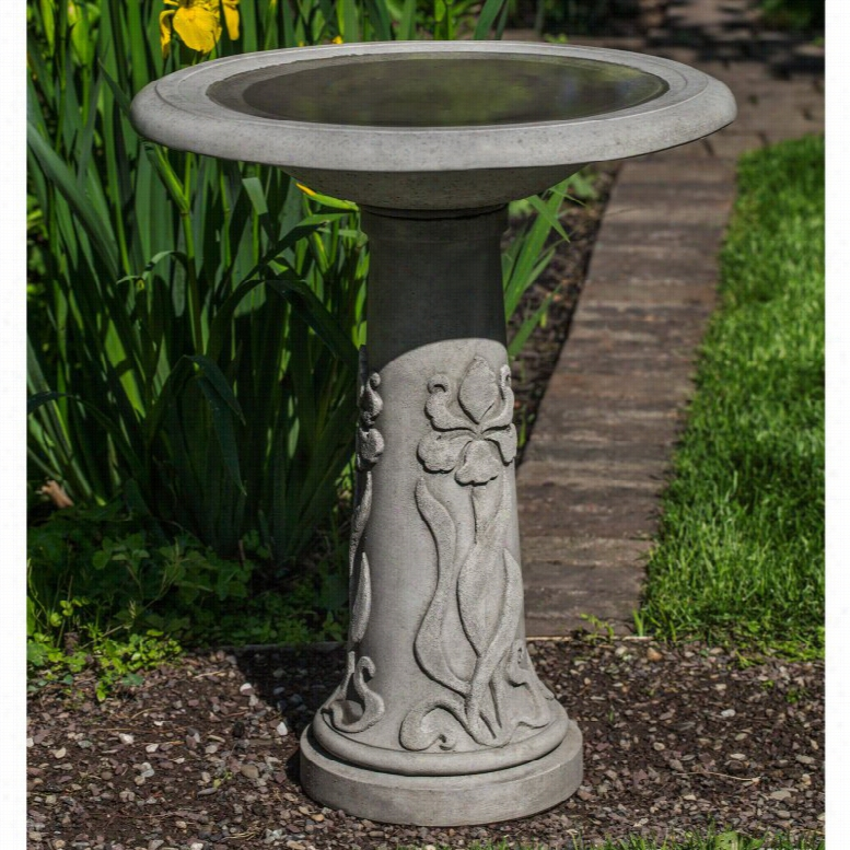 Campania International Iris Pedestal Bird Bath