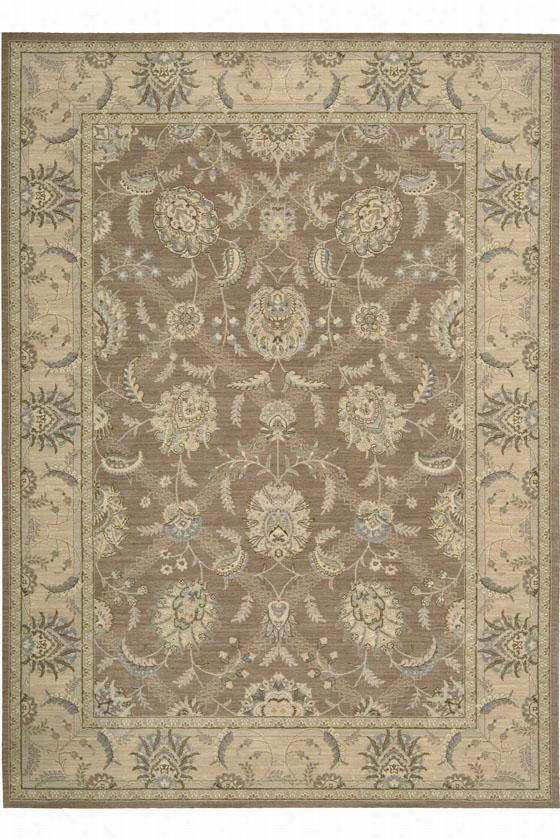 "Nourison Darien Area Rug - 7'9""X10'10"", Coffee"