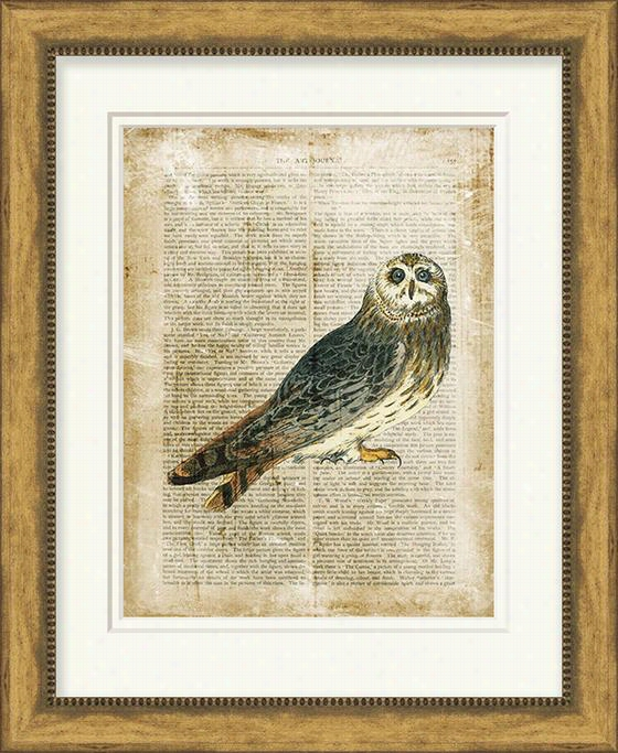 "Antiquarian Owl Wall Art - 50""Hx40""Wx5.5""D, Aged Gold Finish"