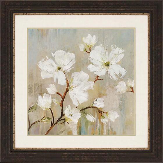 "Sweetbay Magnolia Framed Wall Art - 36""Squarex1""D, Sweetbay Magnolia I"