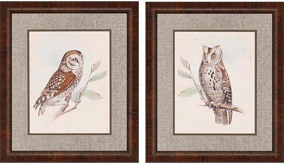 Meyer Owls Framed Wall Art - Set Of 2 - Set Of Two, Dark Wood Finish