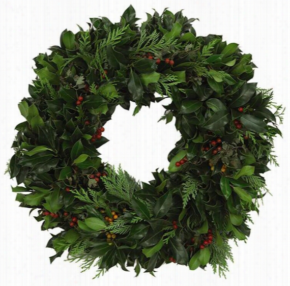 "Holly And Cedar Wreath - 20"" Diameter, Holly"