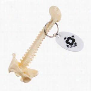 Spine Keychain