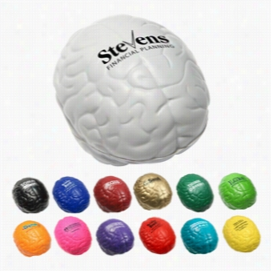 Multi Color Custom Brain Stress Reliever