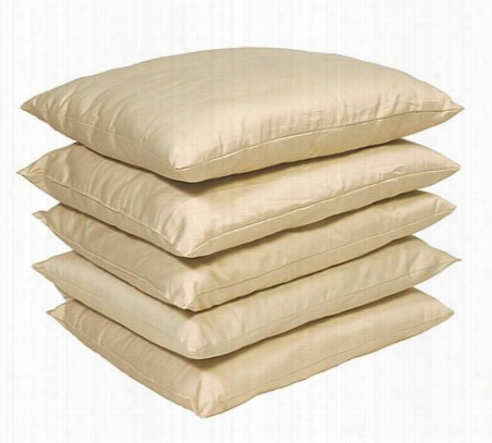 Organic Merino Wool Pillow Standard