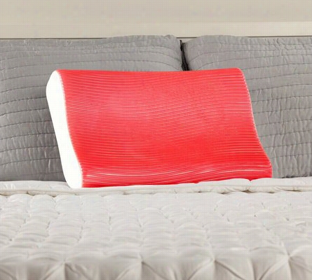 Sealy Memory Foam and Hydraluxe Gel Contour Pillow Standard