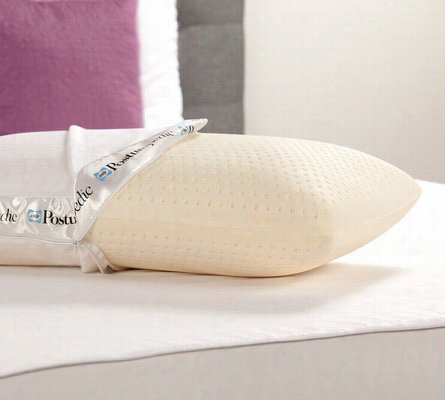 Sealy Posturepedic Latex Bed Pillow Standard