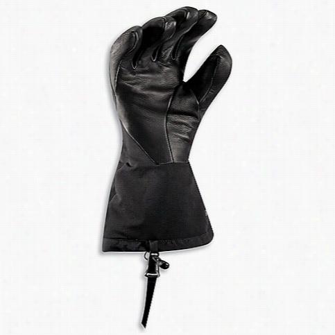 Arcteryx Men's Zenta AR Glove