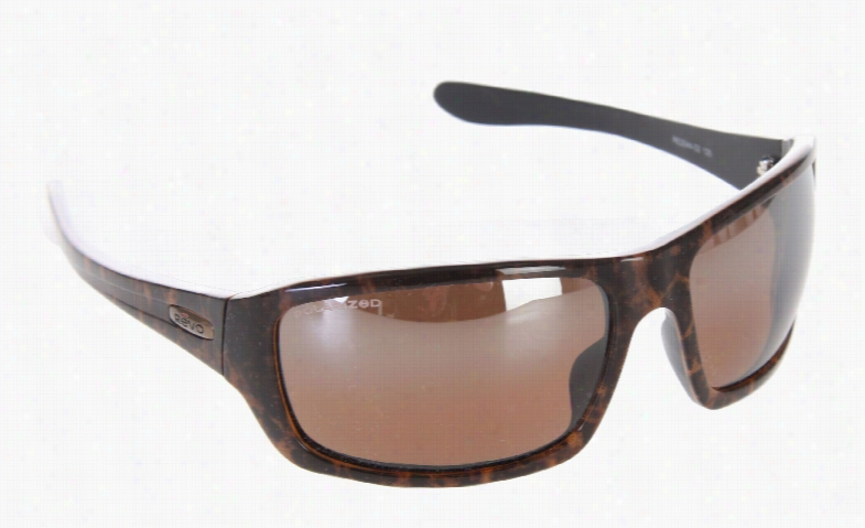 Revo Way Point Sunglasses