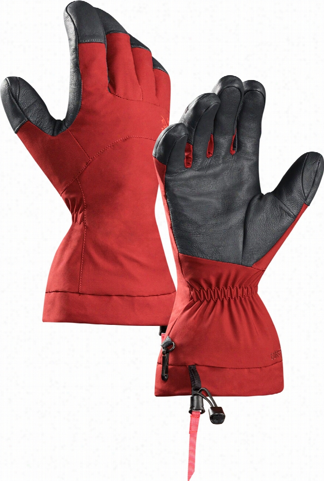 Arc'teryx Fission Gore-Tex Gloves