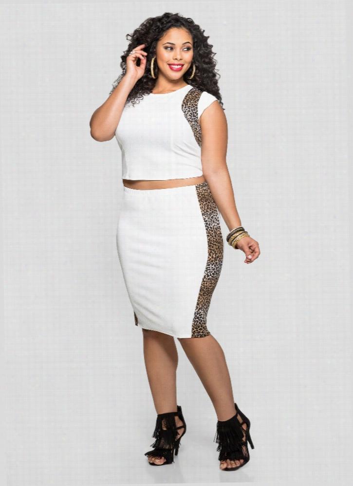 Cheetah Trim Slim Skirt