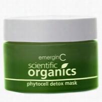EmerginC Scientific Organics Phytocell Detox Mask 1.69 oz