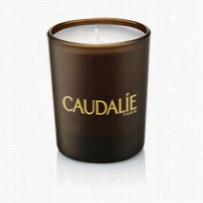 Caudalie Divine Candle 1 ct