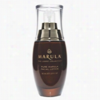 Marula Pure Beauty Oil Facial Lotion 1.69 oz