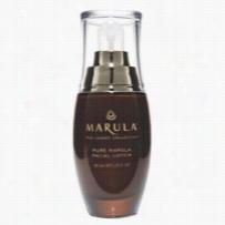 Marula Pure Beauty Oil Facial Lotion 1.69 oz